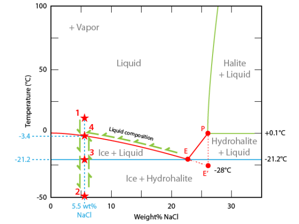 Ice Melting In A H2o Nacl Inclusion The World Of Fluid Inclusions